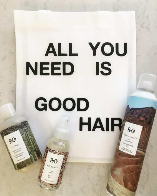 R+CO, product, barney martin, hair, blow out